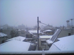 morning_snow