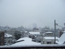 Snow 20060121
